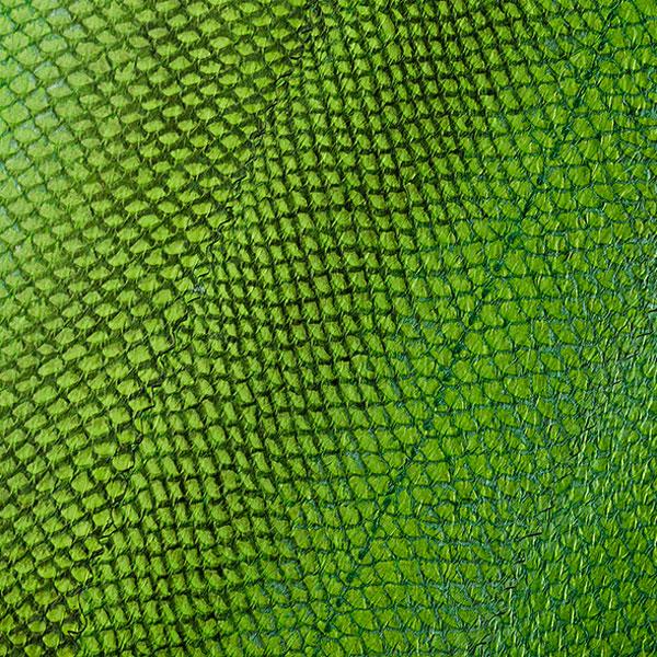Grüne Möbelfronten aus Fischhaut