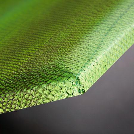 Grüne Möbelfronten aus Lachshaut